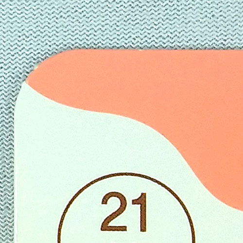 Adhesive Perfect Skin Concealer 8g #21 Liquid Type