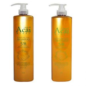 Okubo Acai Berry No Silicone 1000ml (Shampoo or Treatment)